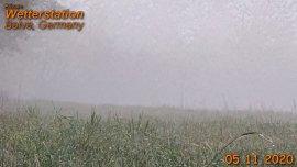 05.11.2020, der erste Frost und Nebel im Herbst 2020